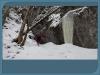 6. zimný zraz v Stratenej