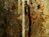 Detail výzdoby v Kvapľovej chodbe